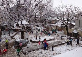 初雪遊び�@.jpg