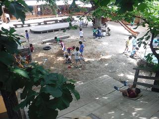 園庭2020.6-�A.jpg