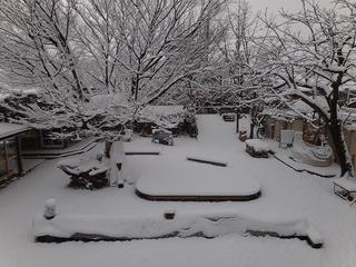 雪景色(朝一番)�@.jpg
