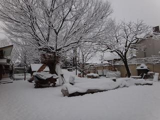 雪景色(朝一番)�A.jpg