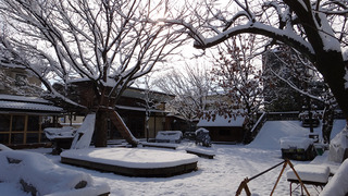 雪景色(木漏れ日)�@.jpg